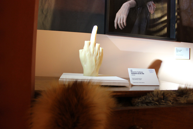 CONTEMPORARY BESTIARY @ Natural History Museum, Venice (11)