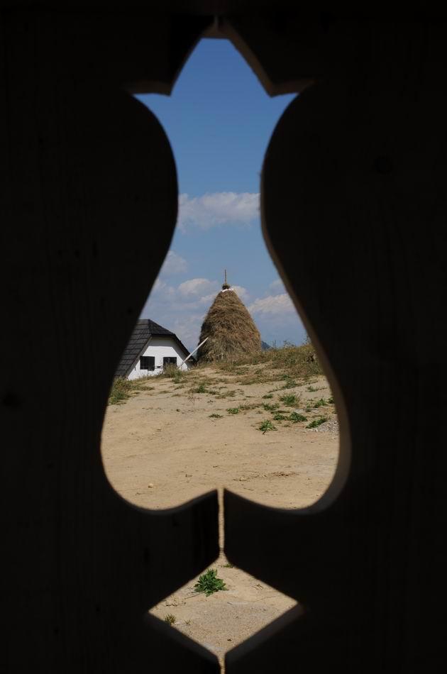 artFORest 2013 - dosul girciului - foto lucian muntean 10
