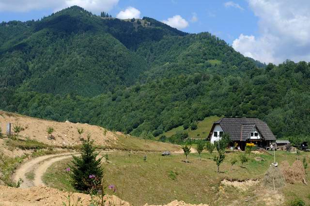 artFORest 2013 - dosul girciului - foto lucian muntean 44