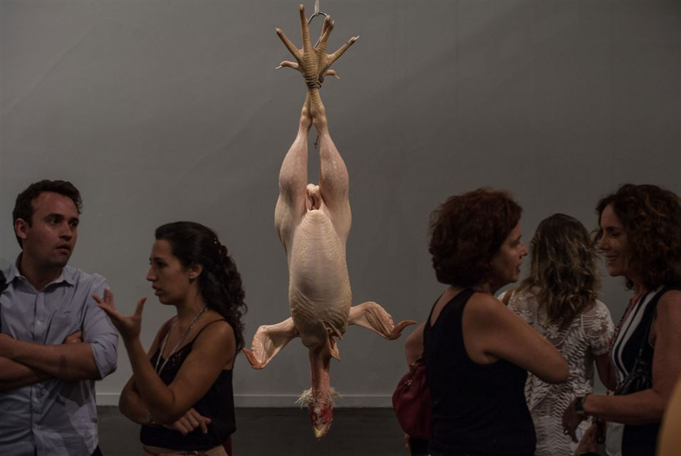 Ron Mueck (8)