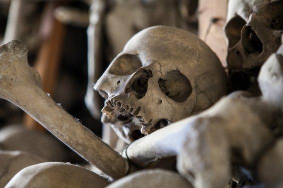 skull-chapel-kaplica-czaszek-poland-skull-close-up-963.jpg__1072x0_q85_upscale