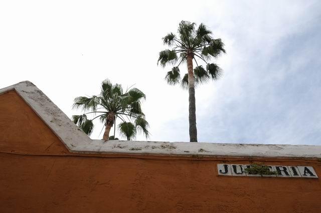 sevilia - spania - foto lucian muntean 0054