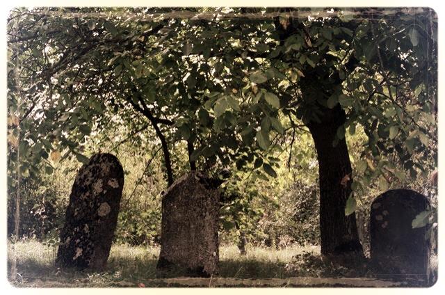 napradea - salaj cimitir evreiesc - foto lucian muntean 16