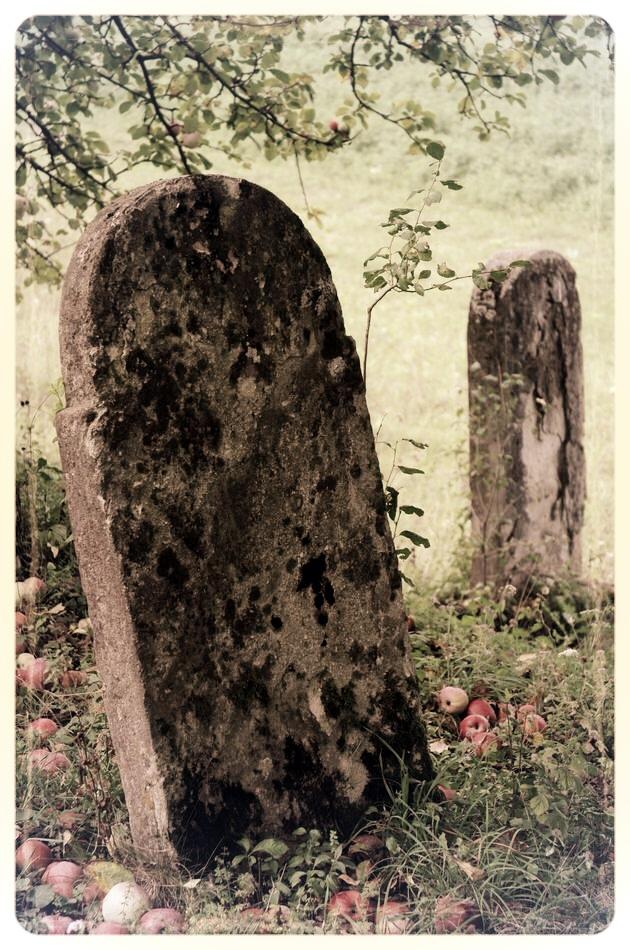 napradea - salaj cimitir evreiesc - foto lucian muntean 17