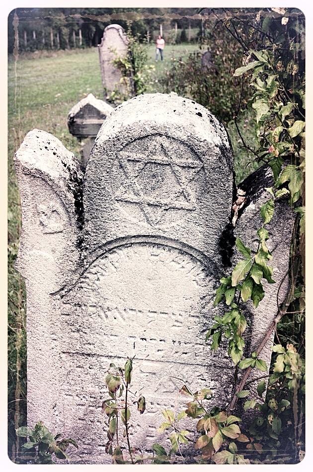 napradea - salaj cimitir evreiesc - foto lucian muntean 22