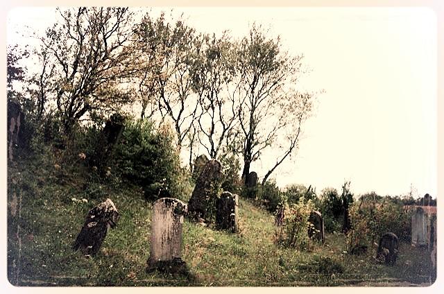 napradea - salaj cimitir evreiesc - foto lucian muntean 29