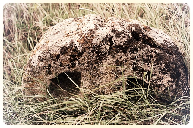 napradea - salaj cimitir - foto lucian muntean 09