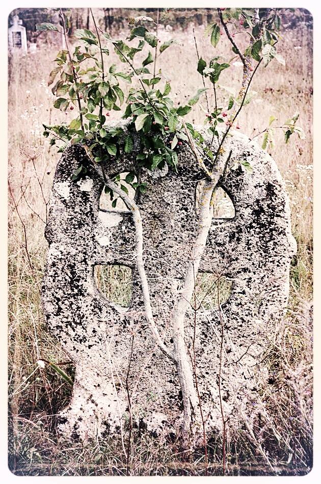 napradea - salaj cimitir - foto lucian muntean 14