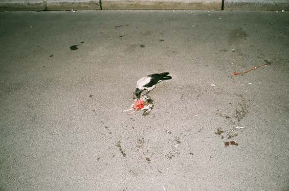 ravens-lunch-Berlin-2014