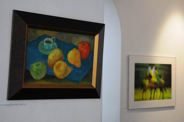 salonul de iarna 2014 - 2015 - simeza - foto Lucian Muntean 66