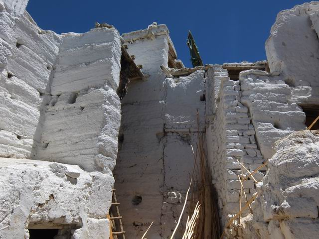 Resize of 02 leh - foto mihaela voda 004