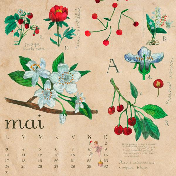 calendar-adc-2010_mai_rgb