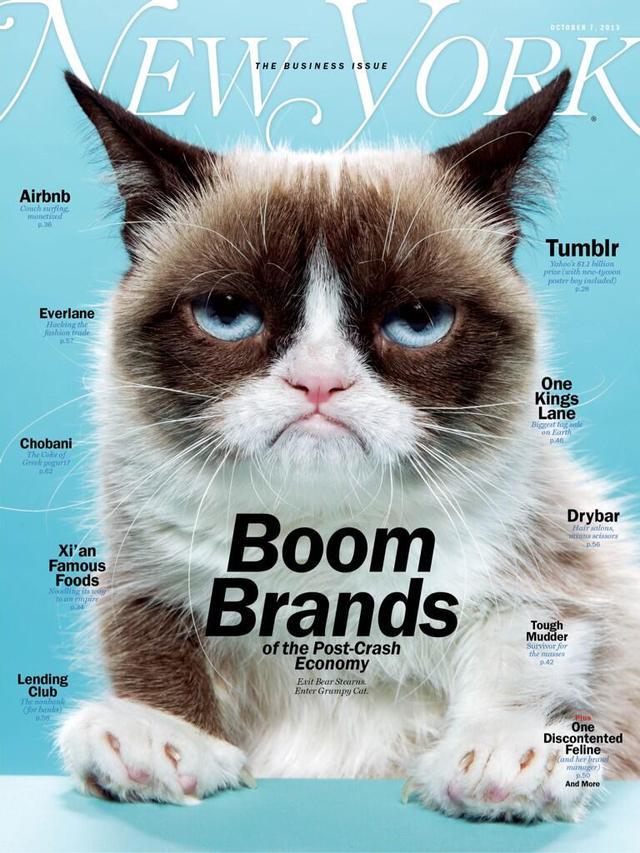 20130930-10292819-grumpycat