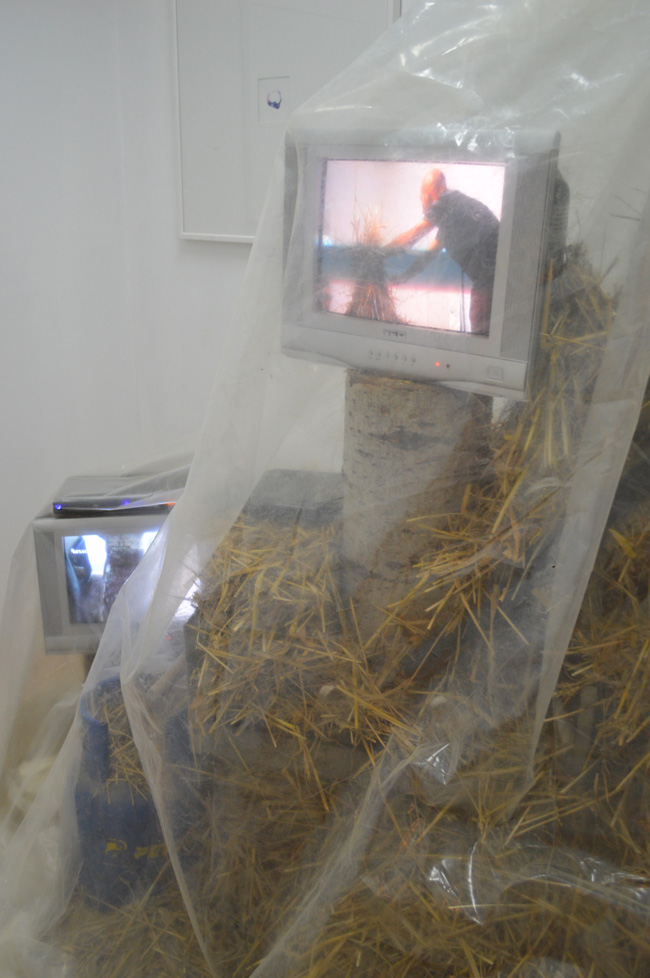 Harvest II @ Asociatia Visual Kontakt, Oradea (1)