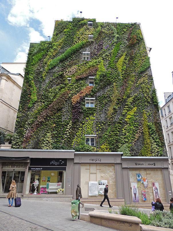 vertical-garden-paris-patrick-blanc-1