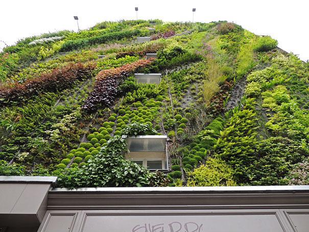 vertical-garden-paris-patrick-blanc-3