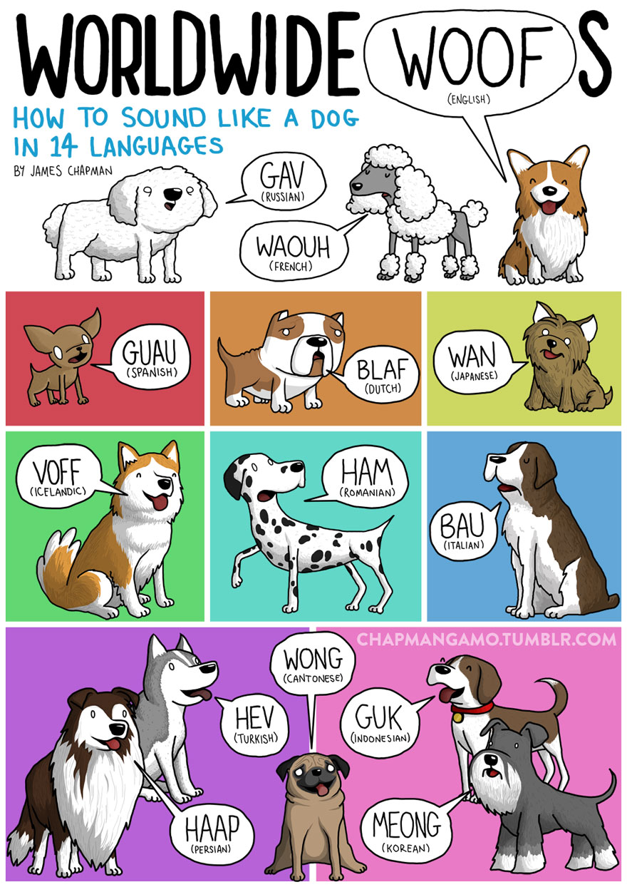 animal-sounds-in-different-languages-james-chapman-4