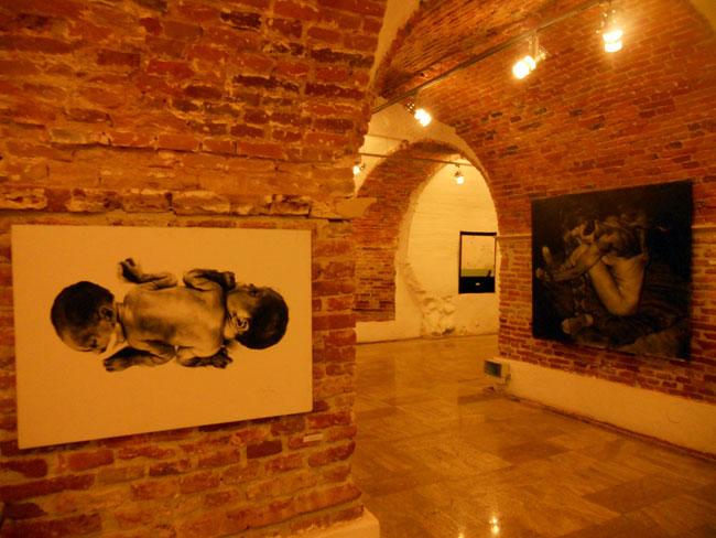 Balul Tinerilor Artiști @ Sibiu (7)
