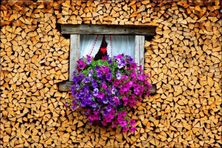 Design de aranjare a lemnelor pentru iarna (14)