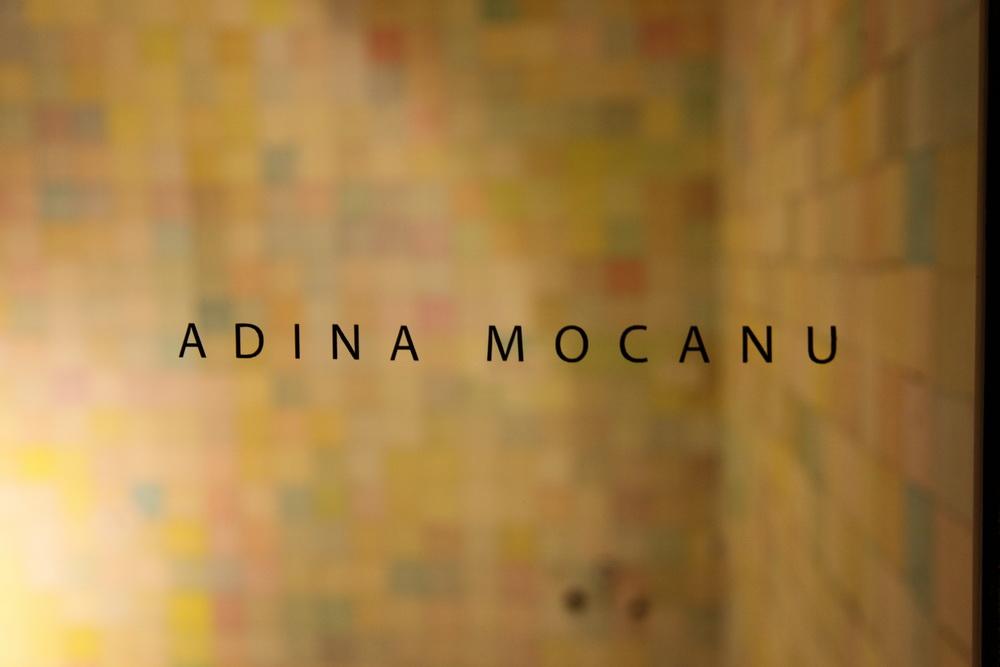 5 - Adina Mocanu IMG_8683