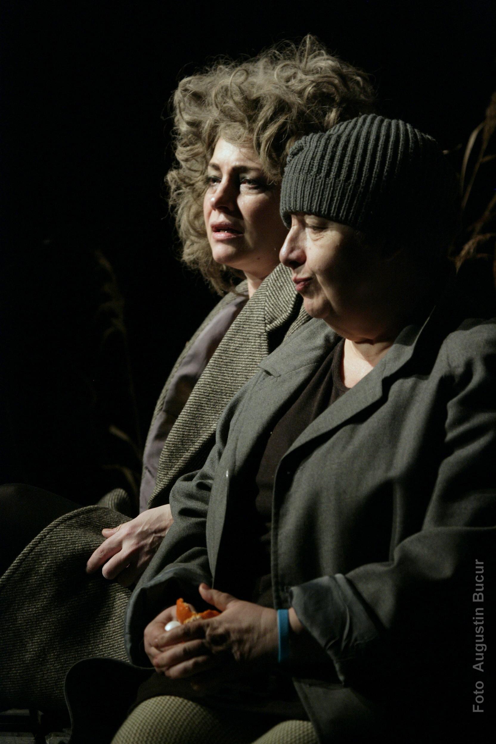 Premiera regizorului Radu Afrim cu piesa Hoti de Dea Loher la Teatrul National din Bucuresti (12)