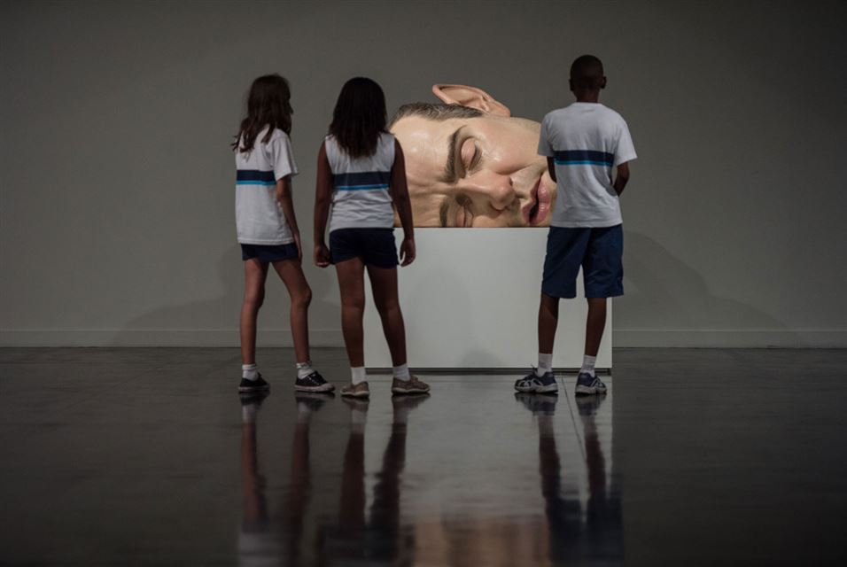 Ron Mueck (10)