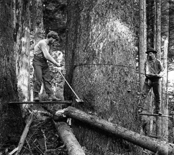 historic.log_.cut_