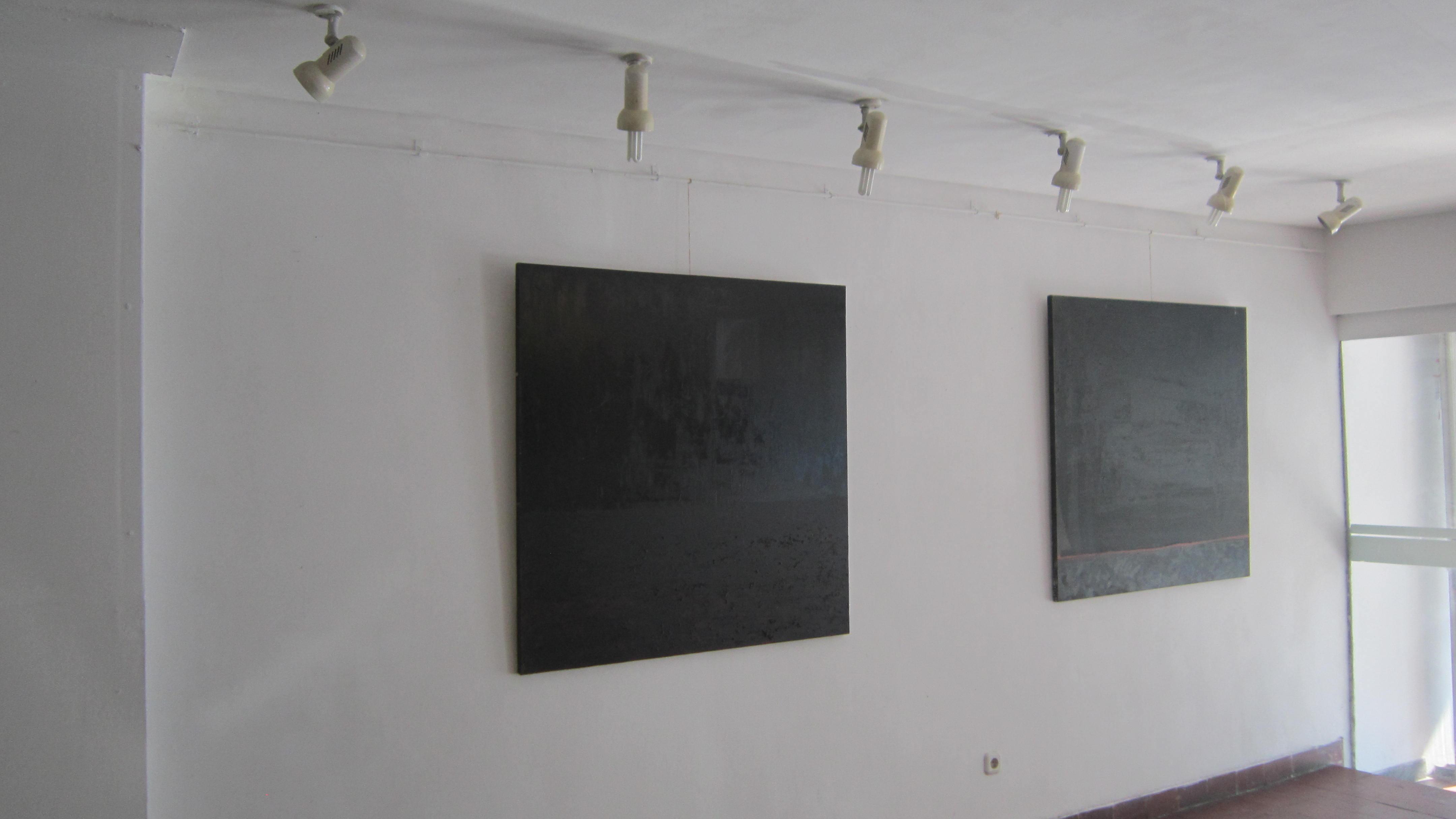 Gabriela Rusu si Marius Burhan, Corespondente formale @ Centrul Artelor Vizuale, Bucuresti, galerie de imagin  (6)
