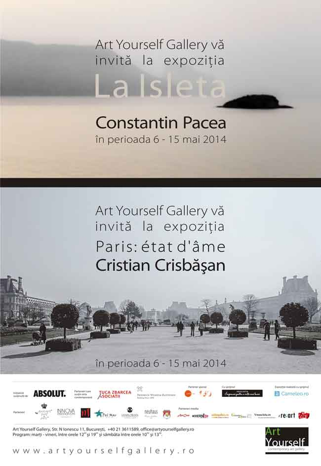 Constantin Pacea, Art yourself gallery