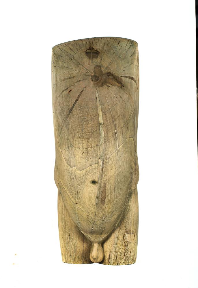 Cristea Simion Fragment lemn nuc 60x20x20