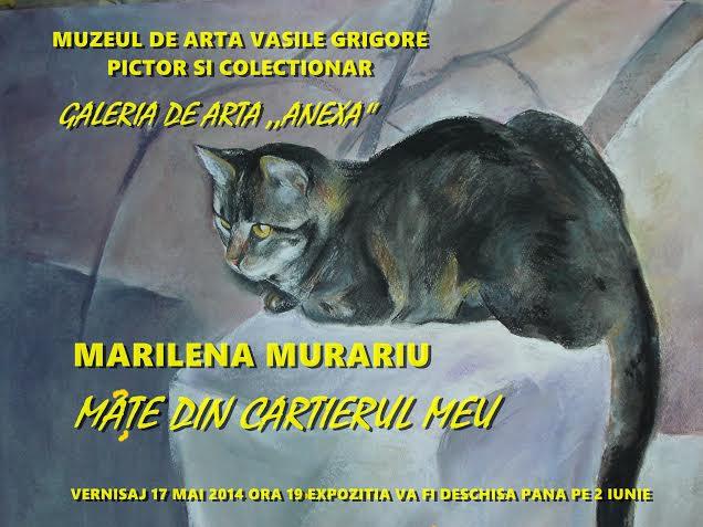 Marilena Murariu Mâţe din cartierul meu