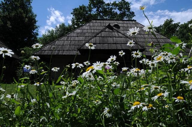 aniversare 78 muzeul satului - foto lucian muntean 11