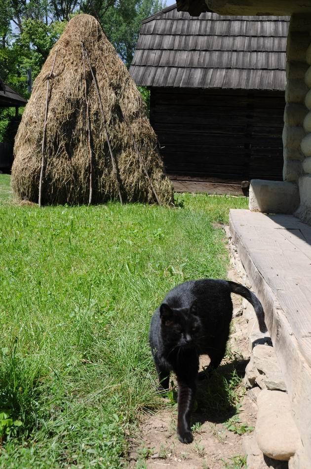 aniversare 78 muzeul satului - foto lucian muntean 12