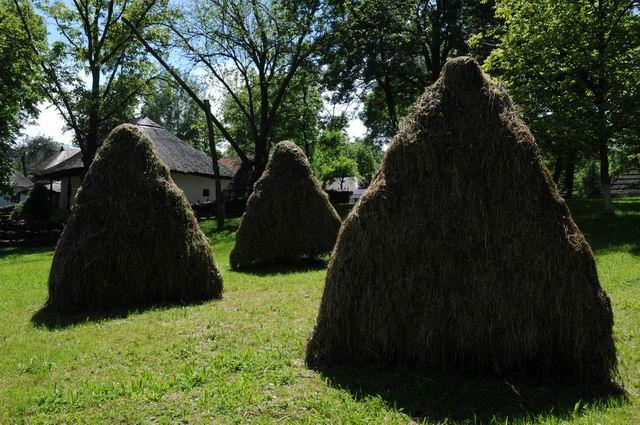 aniversare 78 muzeul satului - foto lucian muntean 16