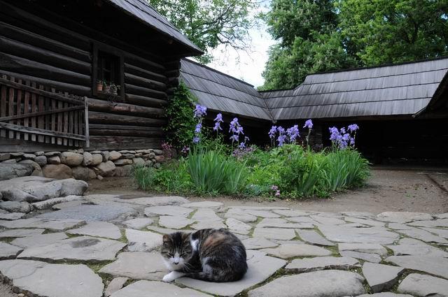 aniversare 78 muzeul satului - foto lucian muntean 21