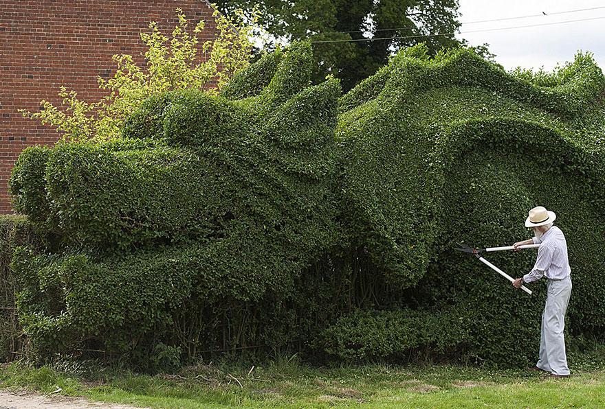 dragon-shaped-hedge-topiary-john-brooker-1
