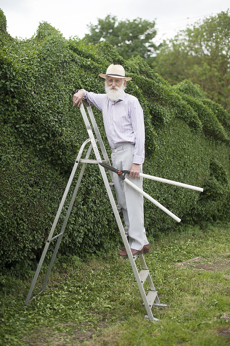 dragon-shaped-hedge-topiary-john-brooker-3
