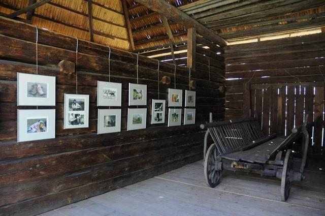 Resize of rogojel - lucian muntean - muzeul satului vernisaj 02
