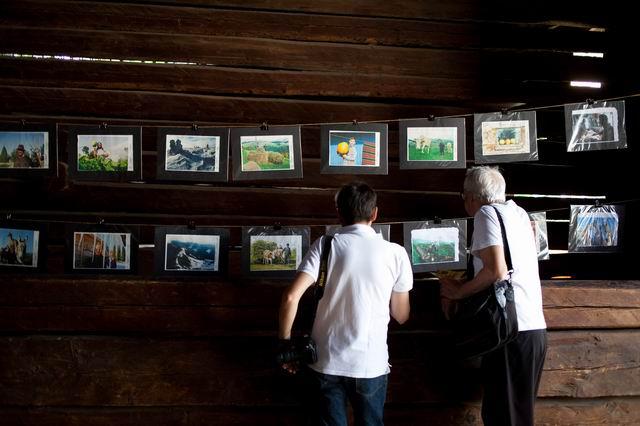 Resize of rogojel - lucian muntean - muzeul satului vernisaj 10