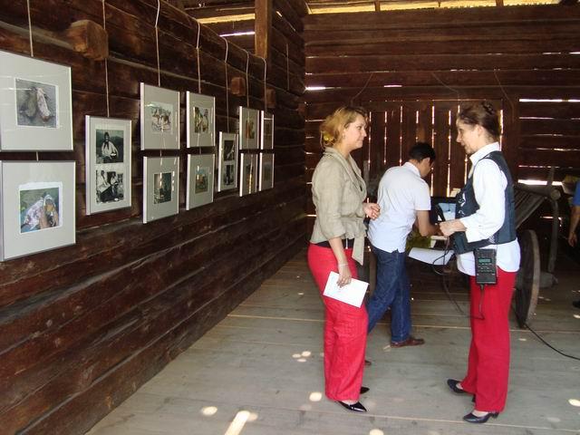 Resize of rogojel - lucian muntean - muzeul satului vernisaj 28