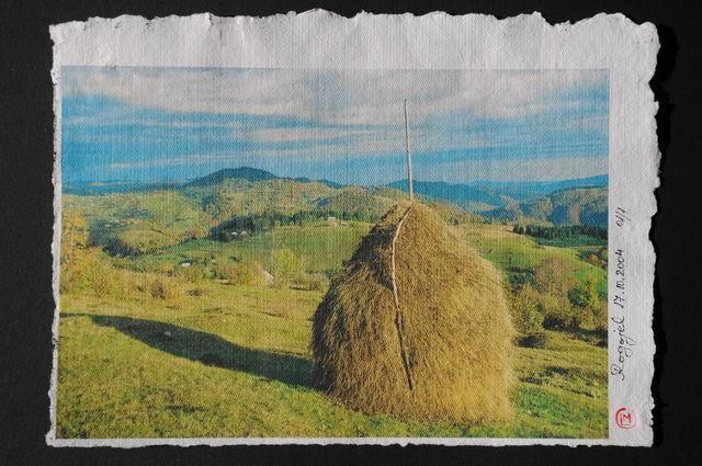 Resize of rogojel - lucian muntean - muzeul satului vernisaj 41