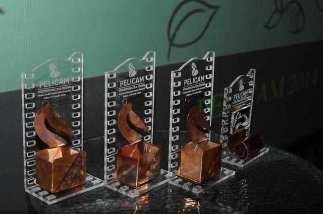 pelicam - tulcea - foto lucian muntean 076