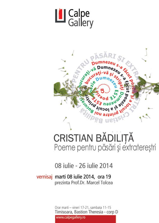 AFIS-cristian-badilita-WEB