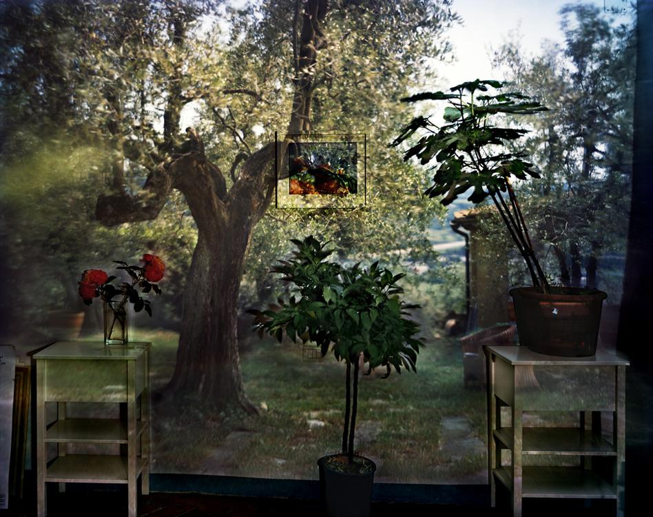 Camera Obscura - Abelardo Morell (9)