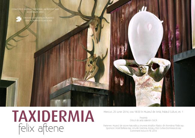 Felix Aftene Taxidermia (6)