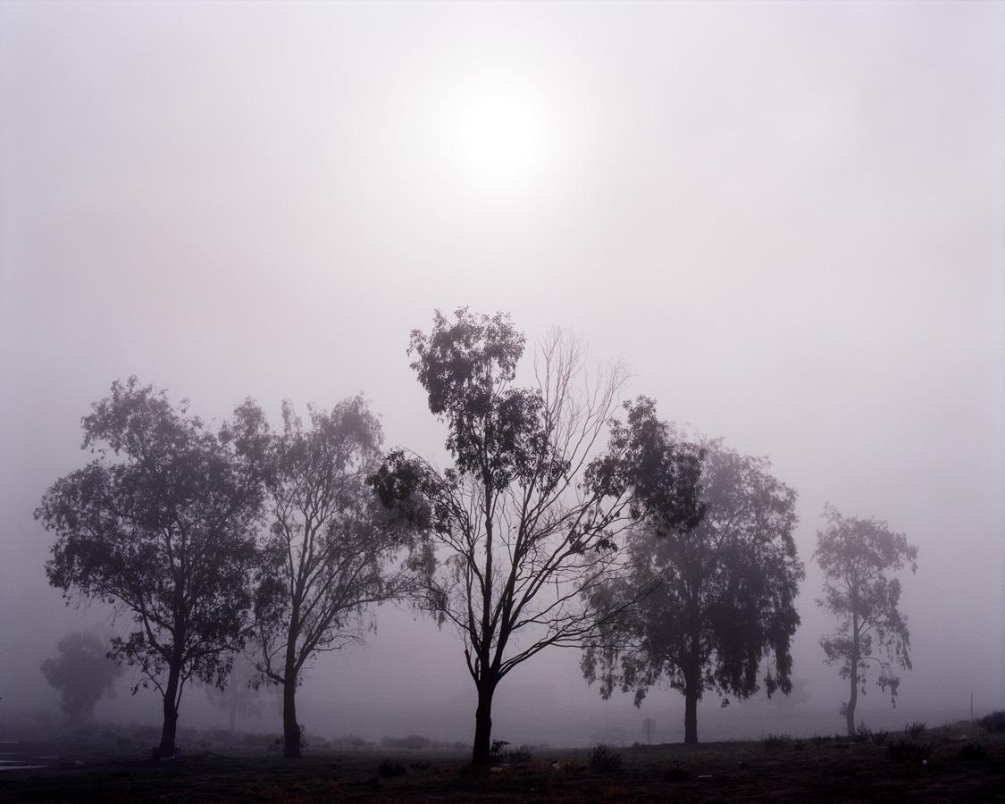 Night Landscapes Series by Amanda Friedman (1)