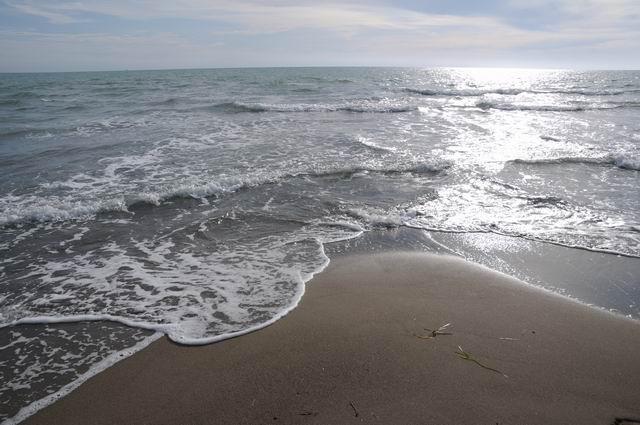 principina a mare - toscana - italia - foto lucian muntean 24