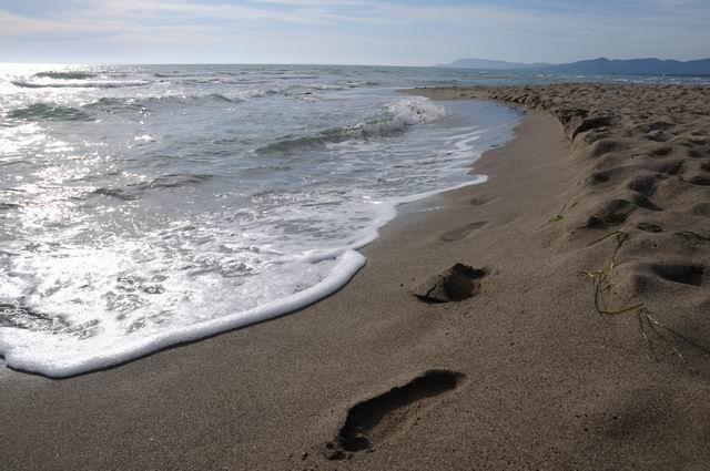 principina a mare - toscana - italia - foto lucian muntean 25