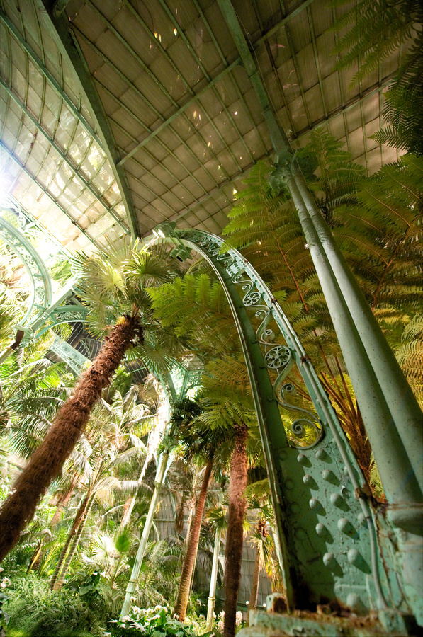 Royal Greenhouses of Laeken (10)