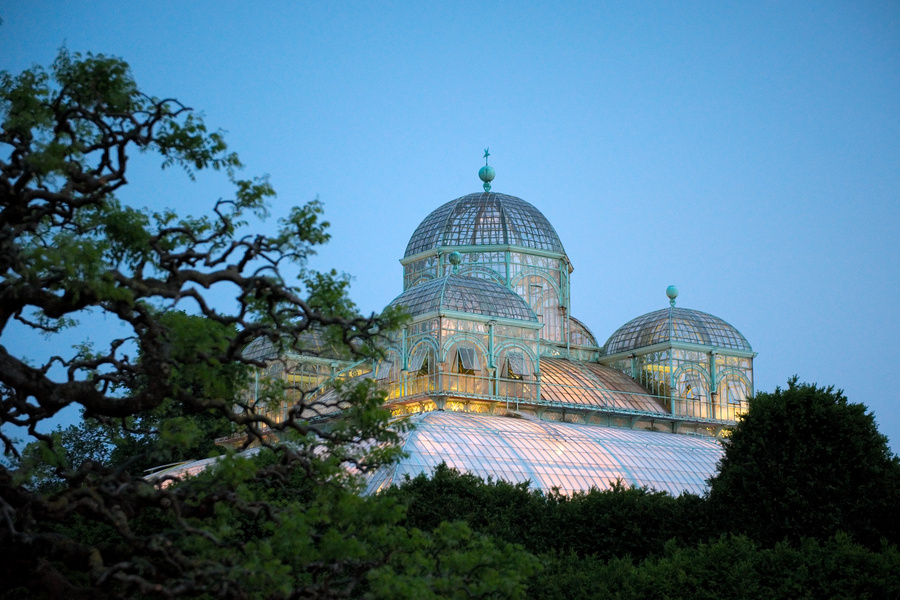 Royal Greenhouses of Laeken (4)